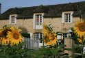 bed and breakfast Domaine des Hirondelles
